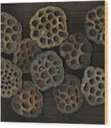 Lotus Pods Wood Print