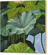 Lotus Rising Wood Print