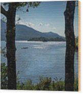 Lough Leane  Wood Print