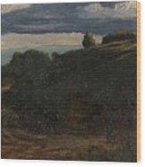 Louis Michel Eilshemius American 1864-1941 Summer Twilight, 1884 Wood Print