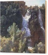 Louise-josephine Sarazin De Belmont  View Of The Falls At Tivoli Wood Print