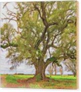 Louisiana Dreamin' Wood Print