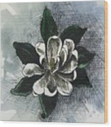 Louisiana Magnolia Wood Print