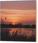 Louisiana Rice Field At Sunset Wood Print
