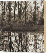 Louisiana Swamps 3 Wood Print