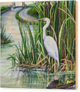 Louisiana Wetlands Wood Print by Elaine Hodges