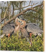 Love Birds - Great Blue Heron Wood Print