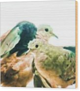 Love Birds Wood Print