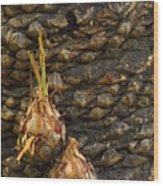 Love Buds Wood Print