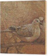 Love Doves Wood Print