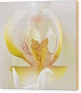 Love Flower Wood Print