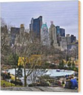 Love In Central Park Too Wood Print
