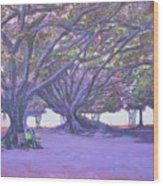 Love In Lal Bagh 4 Wood Print