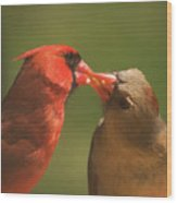 Love Is In The Air Cardinals Square Wood Print