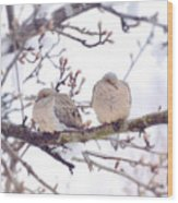 Love Is In The Air - Mourning Dove Couple Wood Print