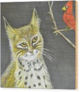 Love My Cats And Cards Wood Print