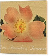 Love Remembers Tomorrow Wood Print