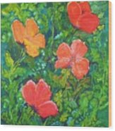 Love Those Poppies Wood Print