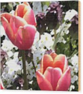 Love Tulips Wood Print