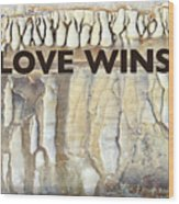 Love Wins Wood Print