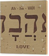 Love Word In Hebrew Typography Wood Print