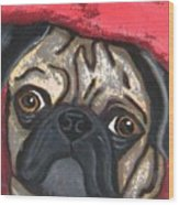 Loveable Pug Wood Print