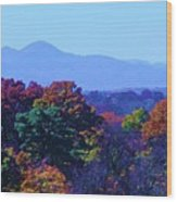 Lovely Asheville Fall Mountains Wood Print