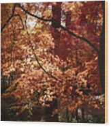 Lovely Autumn Tree Wood Print