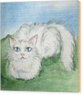 Lovely Kitty. White Cat Kusyaka Wood Print
