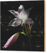 Lovely Lilies Partners Wood Print