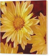 Lovely Mums Wood Print