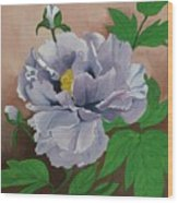 Lovely Peony Flower With Buds Wood Print