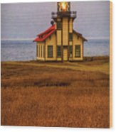 Lovely Point Cabrillo Light Station Wood Print