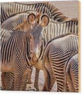 Lovely Stripes  7589 Wood Print
