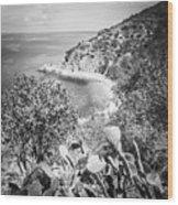Lover's Cove Catalina Island Black And White Photo Wood Print