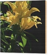 Lover's Lilly Wood Print