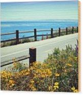Lovers Point Walkway Wood Print