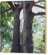 Lover's Tree Wood Print