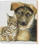 Loving Cat And Dog Wood Print