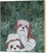Loving Shih Tzu Wood Print
