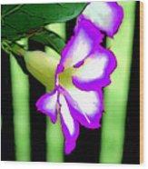 Loving The Color Purple Wood Print
