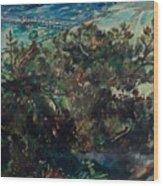 Lovis Corinth Tapes 1858-1925 Zandvoort Coast At Nienhagen. 1917th Wood Print