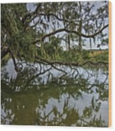 Low Country Days Wood Print