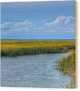 Low Country Vista Wood Print