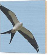 Low Flying Kite Wood Print