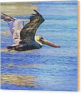 Low Flying Pelican Wood Print