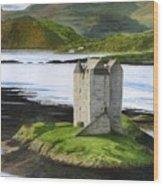 Low Tide At Castle Stalker Wood Print