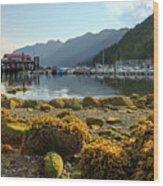 Low Tide At Horseshoe Bay Canada Wood Print