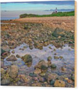 Low Tide At Montauk Point Wood Print