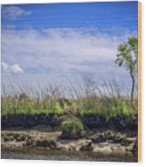 Low Tide II Wood Print